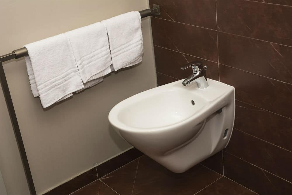 Toto Washlet C100 Elongated Bidet Toilet Seat Review