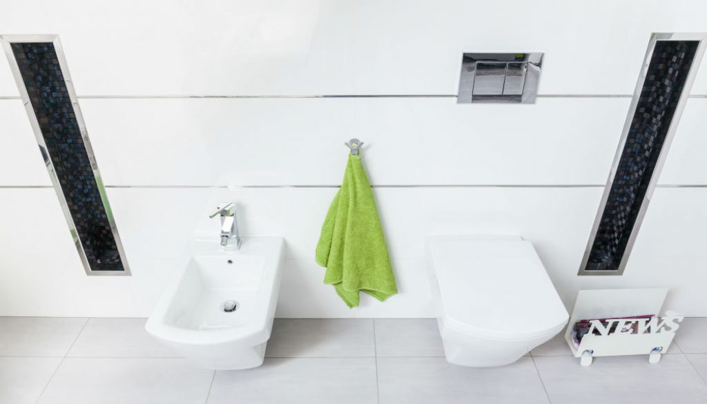 Alpha ONE V2 Bidet Seat Review