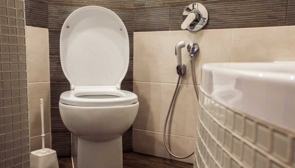 BioBidet Supreme BB-1000 Elongated White Bidet Toilet Seat