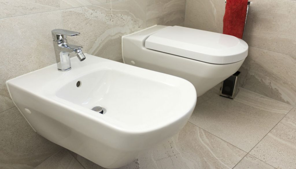 How To Install Bidet Toilet Seat