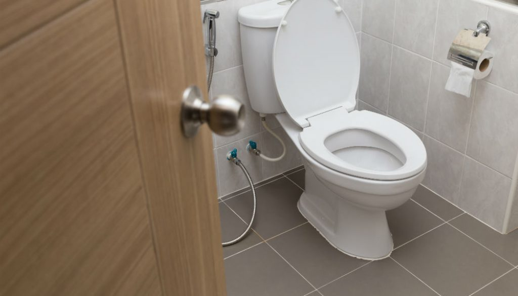 Purpose of Bidet Toilet Seat Attachments