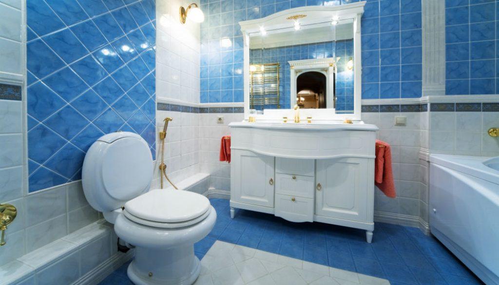 TOTO Washlet Bidet Toilet Seat Review