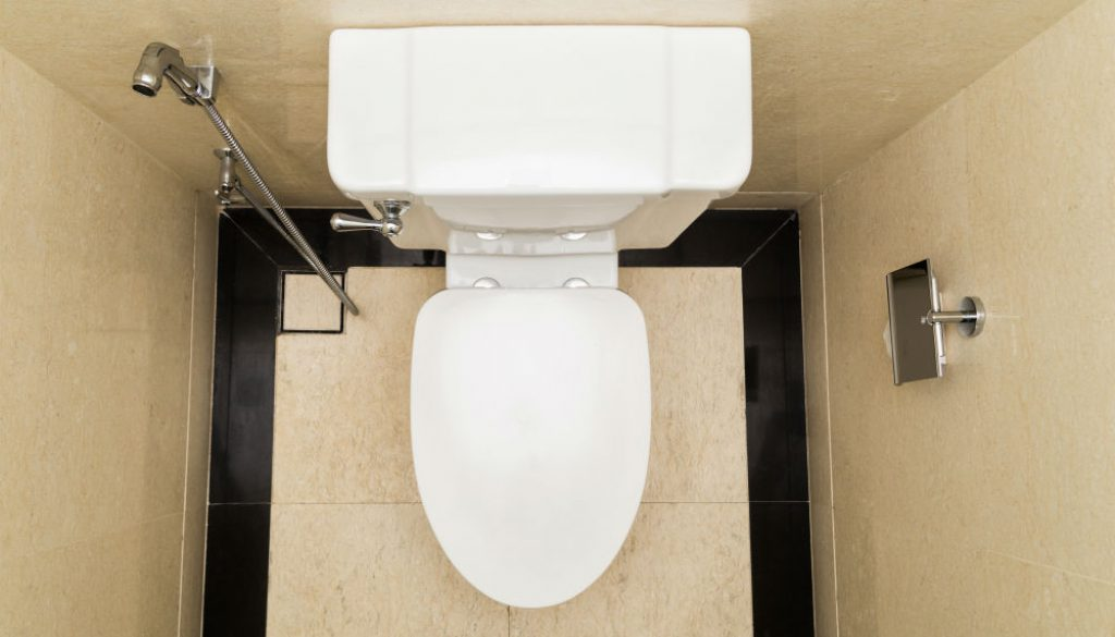 Best Elongated Toilet Seat: Top Three Picks