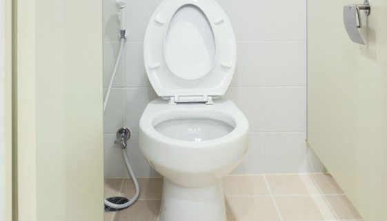 Home Bidet Toilet Seat: Should You Get One?