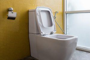 How Do You Dry After Using a Bidet: A Guide for Every Bidet User
