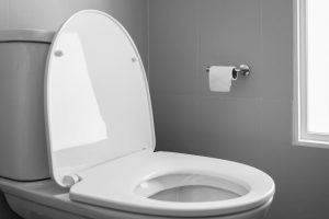 Bidet vs Toilet Paper: Which Is A Better Bathroom Habit?