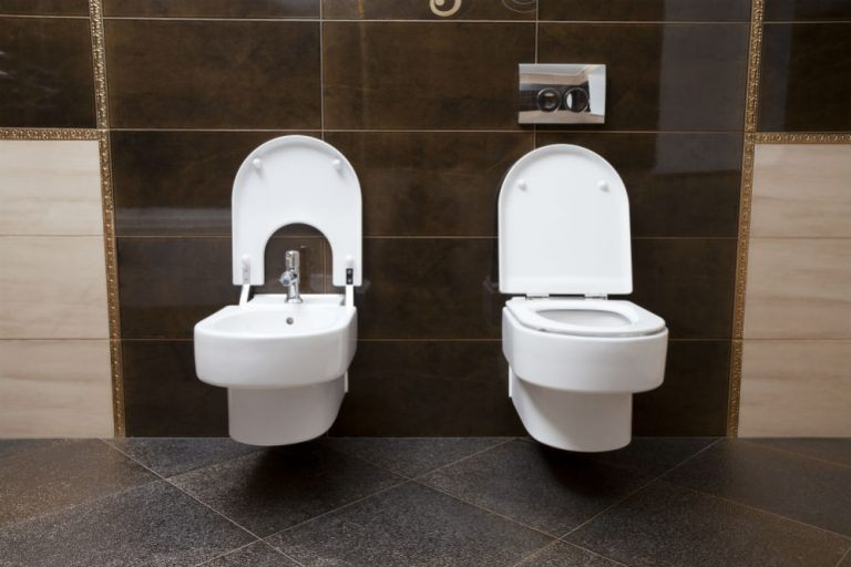 Electric vs Non Electric Bidets: Which One to Get and Why