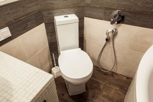 Brondell CleanSpa Advanced Bidet Sprayer: More Than a Bidet