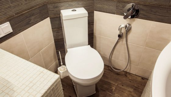 Brondell CleanSpa Advanced Bidet Sprayer