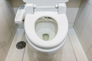 Best Bidet for the Money: Spending Money for the Royal Hiney