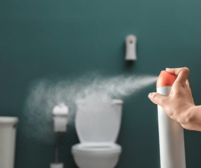 Do Composting Toilets Smell - advancemyhouse.com