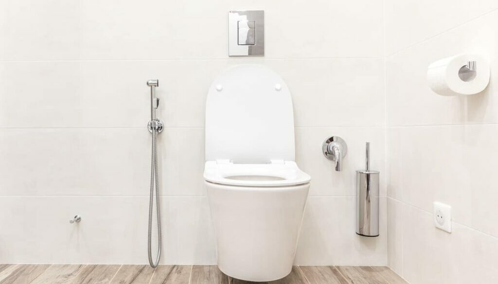 Kohler K 4108 0 Electric Bidet Toilet Seat Review